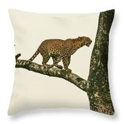 Leopard In A Sal Tree Throw Pillow