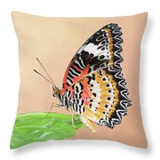 Leopard Lacewing Butterfly #2 V2 Throw Pillow