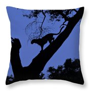 Leopard On The Prowl Throw Pillow