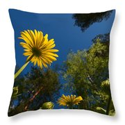 Leopard's Bane 9 Throw Pillow