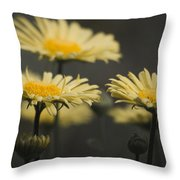 Leopards Bane Desaturated Throw Pillow