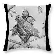 Les Trois Oiseaux Throw Pillow