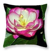 Leslie Ann - Sasanqua Camellia 006 Throw Pillow