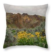 Leslie Gulch Sunflowers Throw Pillow