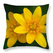 Lesser Celandine Throw Pillow