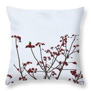 Lesser Yellownape Woodpecker Throw Pillow