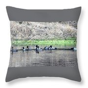 Lessor Scaup Throw Pillow