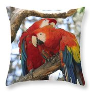 Let Me Get It - Scarlet Macaws Throw Pillow