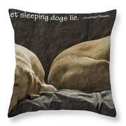 Let Sleeping Dogs Lie Throw Pillow by Gwyn Newcombe