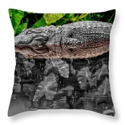 Let Sleeping Gators Lie - Mod Throw Pillow