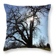 Let The Sun Shine Through Throw Pillow