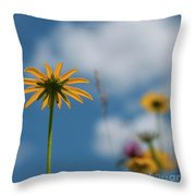 Let The Sunshine In... Throw Pillow