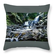 Let The World Do As It Will Throw Pillow