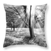 Let There Be Light Throw Pillow by Debra and Dave Vanderlaan