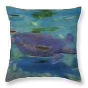 Let Us Lead The Way Throw Pillow