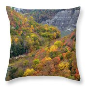 Letchworth Falls Sp Fall Colored Gorge Throw Pillow