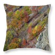 Letchworth Falls State Park Fall Colors Throw Pillow