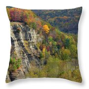Letchworth Falls State Park Gorge Throw Pillow