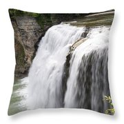 Letchworth Middle Falls Throw Pillow by Michael Chatt