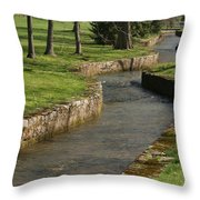 Letort Spring Run Throw Pillow