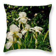Let's Dance. White. Throw Pillow