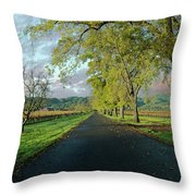Let's Drive Through The Vineyard Throw Pillow