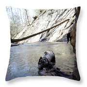Lets Get A Drink Throw Pillow
