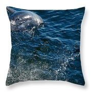 Lets Have Fun Throw Pillow