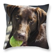 Lets Play Ball Throw Pillow