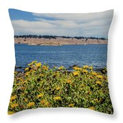 Let's Stop For Lunch Here Throw Pillow