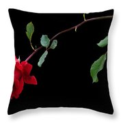 Lets Tango Throw Pillow