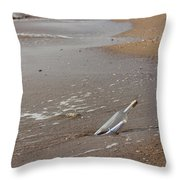 Letter In A Bottle Throw Pillow