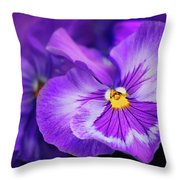 Letters To Violet Throw Pillow