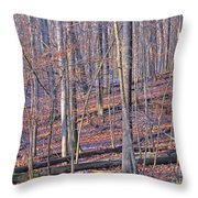 Letting The Light In Throw Pillow