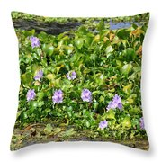 Lettuce Lake Flowers Throw Pillow
