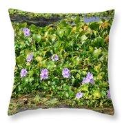 Lettuce Lake Flowers Throw Pillow