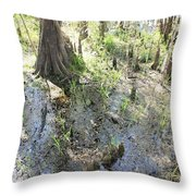 Lettuce Lake Swampland Throw Pillow