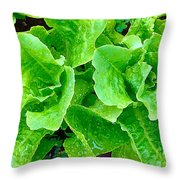 Lettuces Throw Pillow