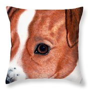 Lewie Throw Pillow
