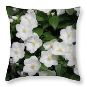 Lewis' Mock-orange Throw Pillow