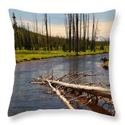 Lewis River Throw Pillow