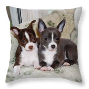 Lexi And Gracie Throw Pillow