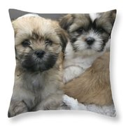 Lhasa Apso Puppy Painting Throw Pillow