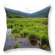 Liberty Marsh Throw Pillow