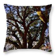 Liberty Oak Harbour Town Hilton Head Sc Throw Pillow by Lisa Wooten