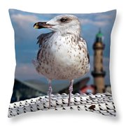 Liberty Of An Pacific Gull Throw Pillow