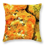 Lichen Abstract 2 Throw Pillow by ABeautifulSky Photography