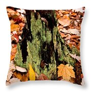 Lichen Castle In Autumn Leaves Throw Pillow