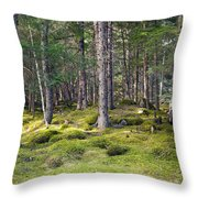 Lichen Covered Mountain Floor Throw Pillow