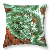 Lichen On Granite Throw Pillow